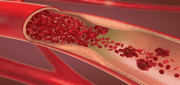 مراحل تكوين كريات الدم الحمراء
