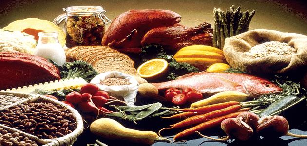 ما هي الأطعمة الحيوانية الخام وفوائدها