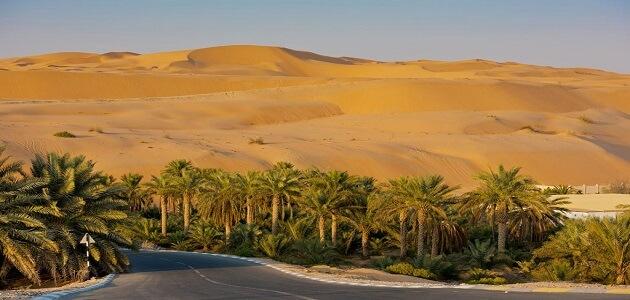 هيئة البيئة والمحميات الطبيعية أبو ظبي
