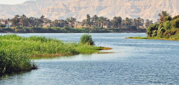 أهمية نهر النيل في قيام الحضارة المصرية القديمة