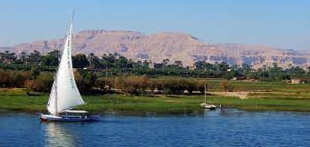 ما النتائج المترتبة على تلوث نهر النيل