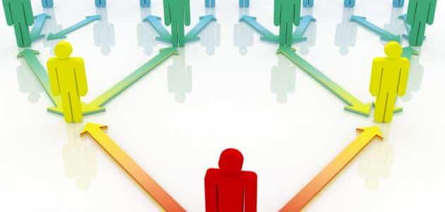 بحث عن التنظيم وأهميته