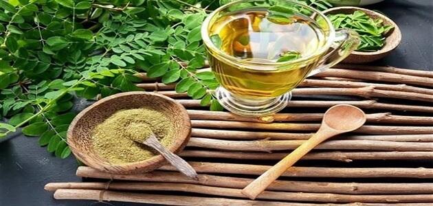 متى يشرب شاي المورينجا للتخسيس