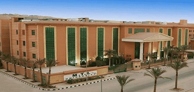 جامعة mit في مصر